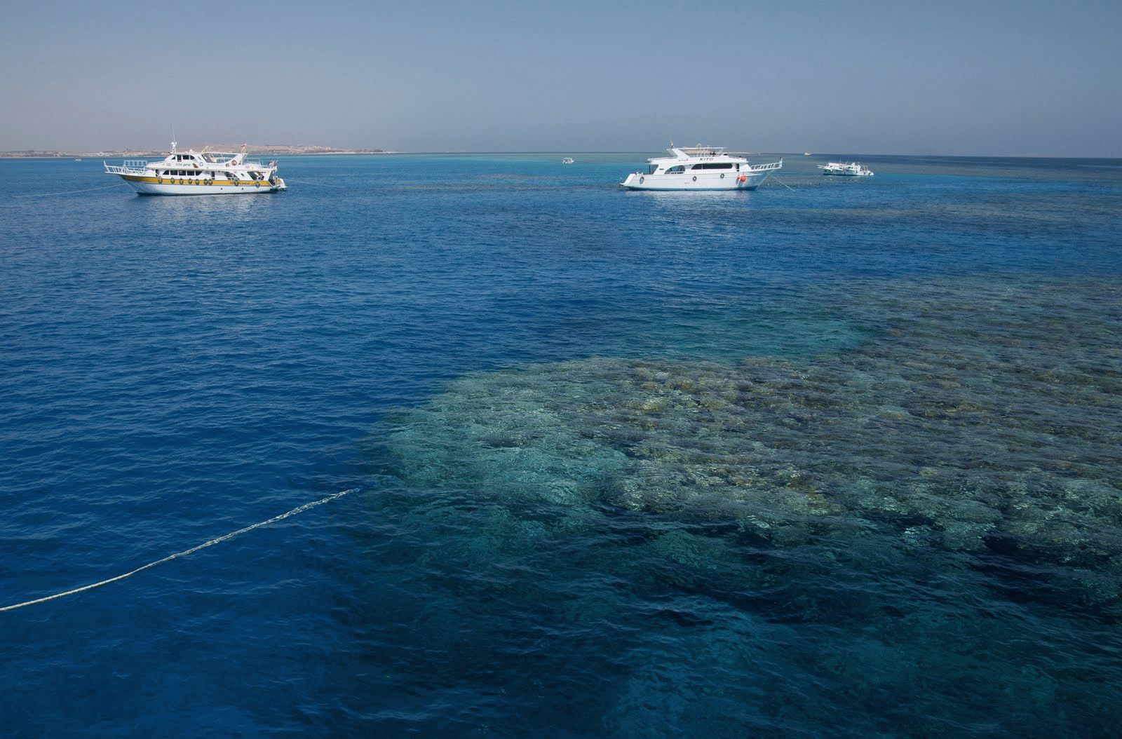 an in depth look at the red sea The canal stretches over 100 mi (160 km) from port said on the mediterranean sea to suez on the red sea the first efforts to build a modern canal came from the egypt expedition of napoleon bonaparte, who hoped the project would give france a trade adavantage over england.