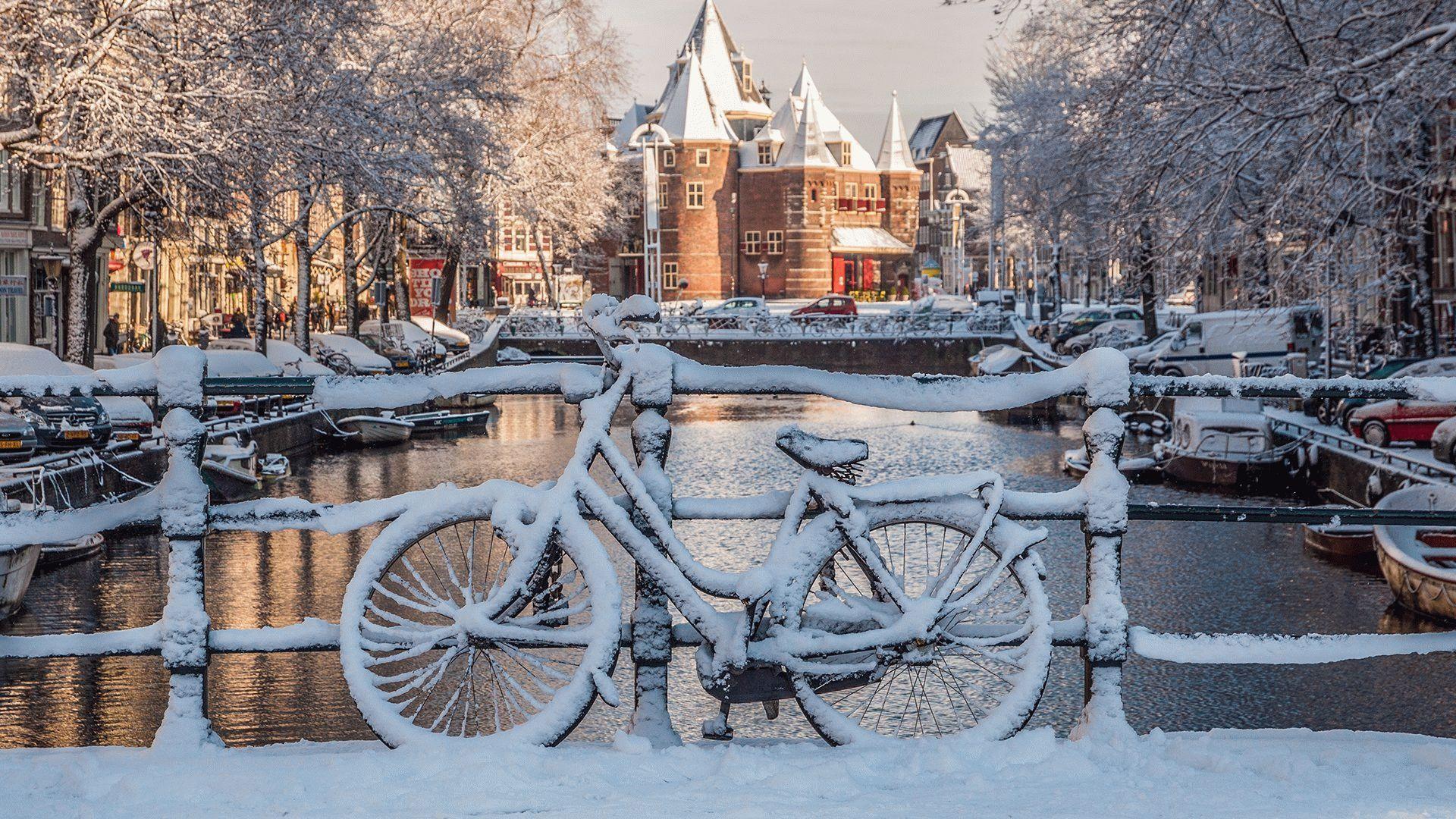 игоревич, вас фото калининграда зимой для рабочего стола известные весьма полезные