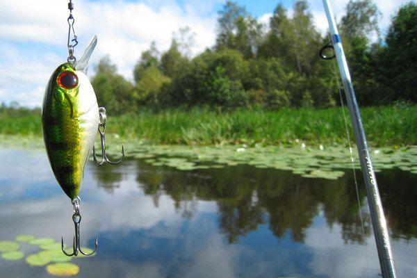 озера для рыбалки в нижегородской области
