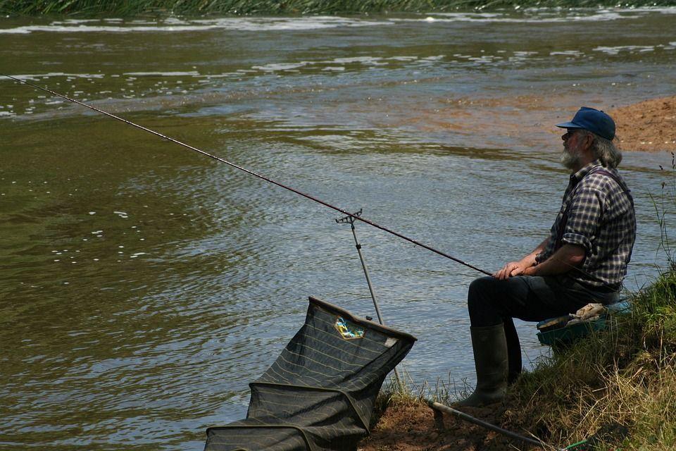 Платная рыбалка в Самарской области