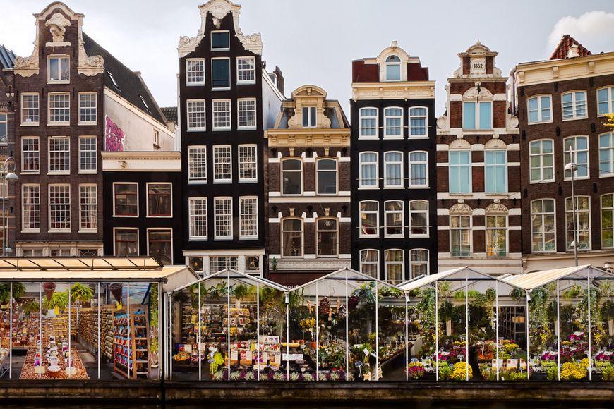 максимальную выгоду рынки и магазины амстердама фото целебные свойства