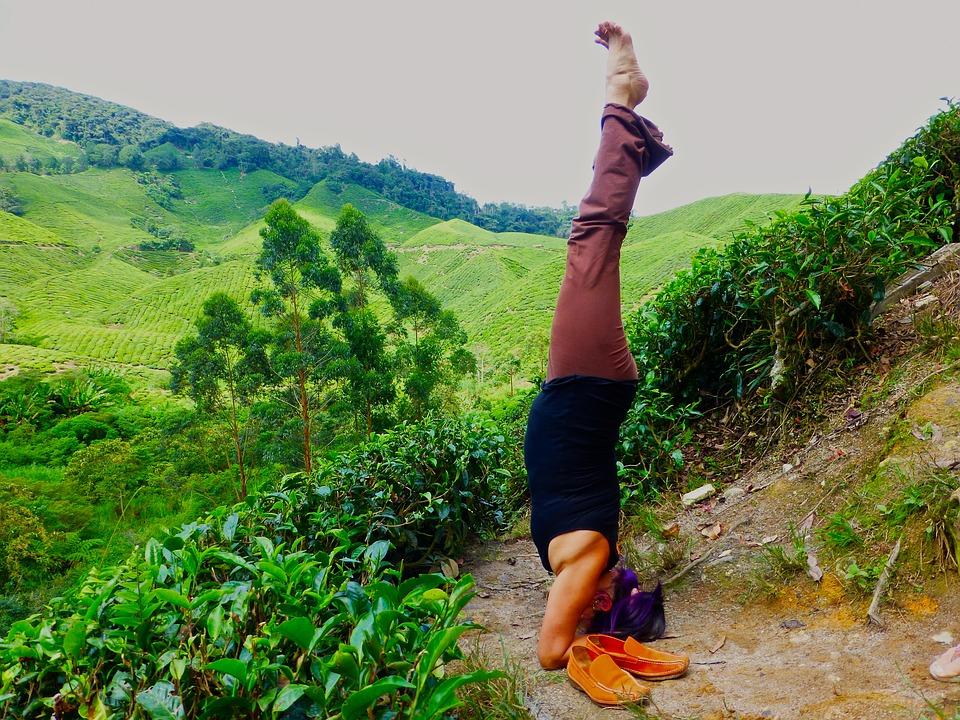 Йога в Малайзии